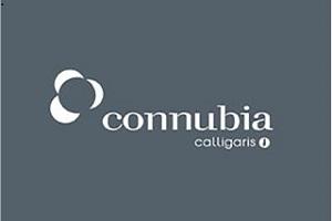 connubia-calligaris